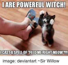 Spell Me Meme - iare powerful witch icasta spell of feed me right meow image