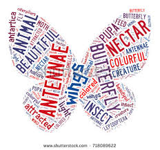 butterfly concept word tag cloud words stock illustration