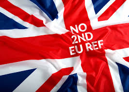 Is Today Flag Day Say No To Any 2nd Eu Referendum
