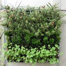 planters that hang on the wall 64 pocket garden pots vertical garden hanging green wall planters