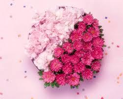 flowers photo 25121 flower wallpapers flowers