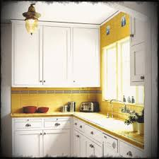 Kitchen Designs For Small Kitchens Kitchen Design Wooden Cabinets For Beautiful Units The Popular