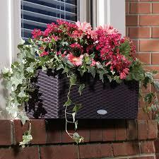 self watering rectangular planter set 20
