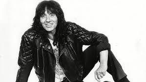 what pop stars pop and rock stars has died this year stevie wright easybeats singer and australian pop star dead at 68