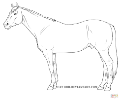 quarter horse coloring page free printable coloring pages
