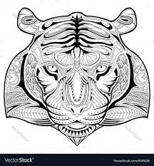 hand drawn tiger coloring page royalty free vector image