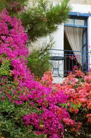 home and garden decor premium business directories free