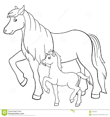 coloring pages farm animals mother horse with foal stock vector