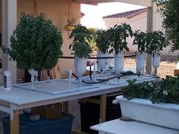 6 plant ebb u0026 flow flood and drain hydroponic system