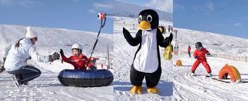 scotland u0027s ski and snowboard destination snowboarding offroad