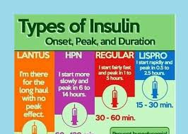 sheet types types of insulin cheat sheet medical estudy