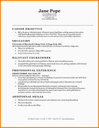 Graphic Design Objective Resume Career Objective For It Studentsresume Objectives Examples