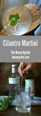 martini oyster best 25 dry martini recipe ideas on pinterest dry martini