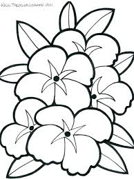 coloring pictures of hibiscus flowers coloring page of flower coloring page of a flower hibiscus flower