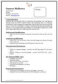 free professional resume format free professional resume exles novasatfm tk