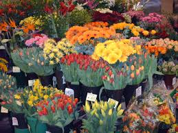 online florists things to remember when visiting your florist flower pressflower