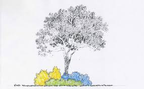 free landscape design plans
