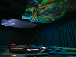 new museum light exhibit my latest art crush pipilotti rist at new museum in new york