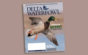 home delta waterfowl