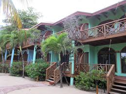 hamanasi eco resort a sustainable stay in beautiful belize trip101
