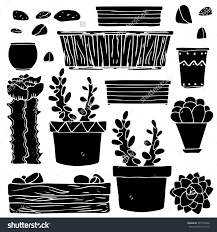 all the cacti you could ever need at a shop in los angeles dwell