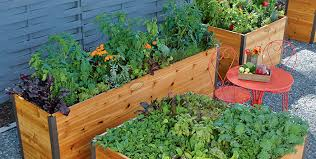 a quick start guide to elevated raised beds gardener u0027s supply