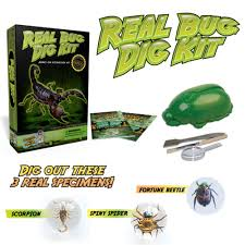 amazon com real insect excavation kit u2013 dig discover and