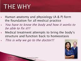 Human Anatomy And Physiology Terminology Medical Terminology Health Professionals Speak A Foreign Language