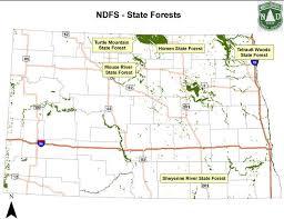 North Dakota forest images Section 1 forests north dakota studies jpg