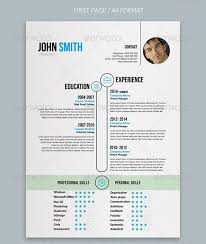 new resume format 2014 word professional resumes example online