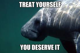 Manatee Meme - when you walk past the ice cream store on friday calming manatee