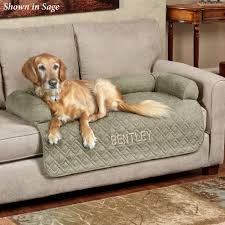 Dog Bed Furniture Sofa by Furniture Covers Pet Covers Furniture Protectors Touch Of Class