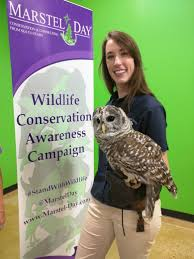 marstel day wildlife center of virginia hosted events for kids to