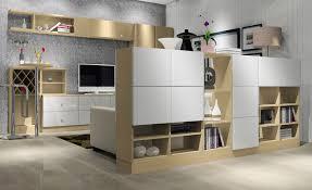 cabinet living room gen4congress com