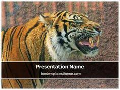 get this free lion powerpoint template with different slides