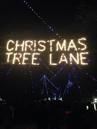 christmas tree farms fresno ca christmas lights decoration