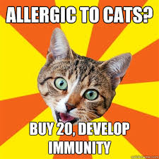 allergic to cats buy 20 develop immunity cat meme cat planet