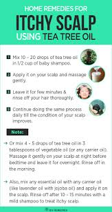 Tea Tree Oil Hair Loss Best 25 Tea Tree Oil Shampoo Ideas On Pinterest Coconut Oil