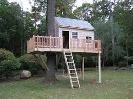 modern backyard tree house pictures photos and images tree