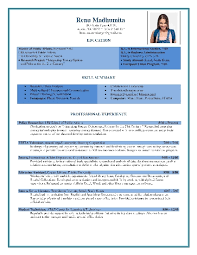 resume format word document free professional resume templates sle for hr template