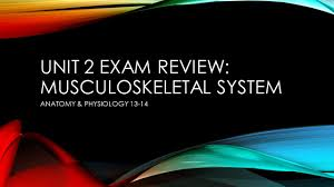 unit 2 exam review musculoskeletal system ppt download