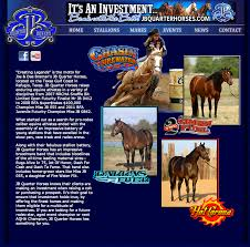 wild westwebs equine graphics and web design for the horse industry