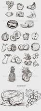 best 25 fruit sketch ideas on pinterest pineapple drawing
