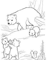 20 bear images coloring bear care bears