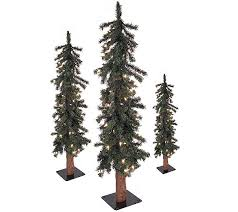 set of 3 prelit gatlinburg alpine trees w clear lights qvc