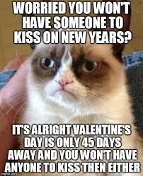 Grumpy Cat New Years Meme - grumpy cat meme imgflip