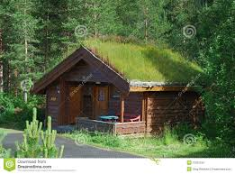 wooden house with green roof in forest stock image image 19323199