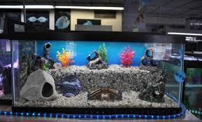 interior ornament custom fish tank ornaments beloved small covers
