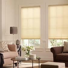 Blinds For Living Room Budget Cordless Tdbu Light Filtering Cell Shade Blinds Com