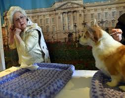 queen elizabeth dog westminster dog show will have 2 new breeds more agility brush